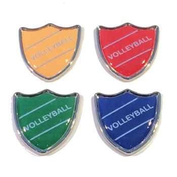 VOLLEYBALL badge